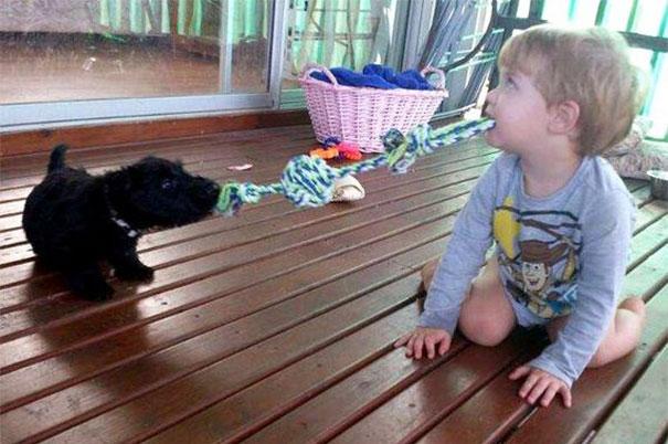 Dzieci zachowuja sie jak zwierzeta (11)