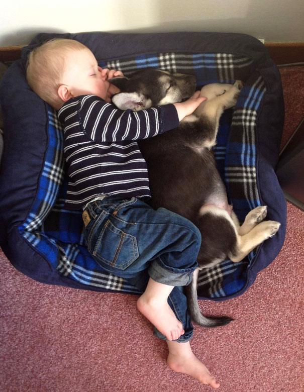 Dzieci zachowuja sie jak zwierzeta (12)
