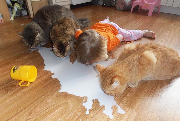 Dzieci zachowuja sie jak zwierzeta (4)